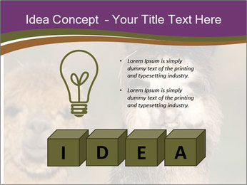 0000080389 PowerPoint Template - Slide 80