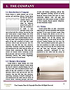 0000080390 Word Template - Page 3