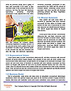 0000080396 Word Templates - Page 4