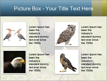0000080400 PowerPoint Template - Slide 14