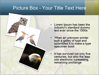 0000080400 PowerPoint Template - Slide 17