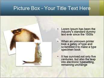 0000080400 PowerPoint Template - Slide 20