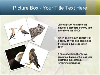 0000080400 PowerPoint Template - Slide 23