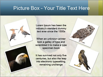 0000080400 PowerPoint Templates - Slide 24