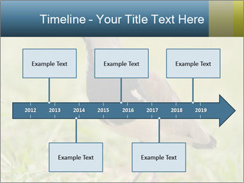 0000080400 PowerPoint Template - Slide 28