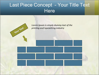 0000080400 PowerPoint Template - Slide 46