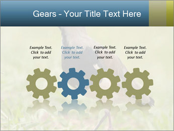 0000080400 PowerPoint Template - Slide 48