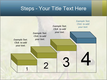 0000080400 PowerPoint Template - Slide 64
