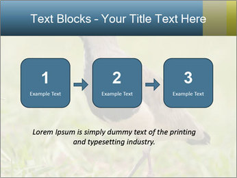 0000080400 PowerPoint Template - Slide 71