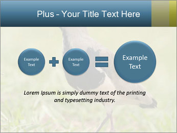 0000080400 PowerPoint Templates - Slide 75