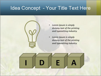 0000080400 PowerPoint Template - Slide 80