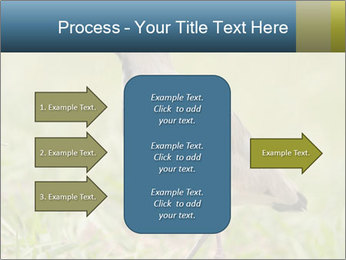 0000080400 PowerPoint Templates - Slide 85
