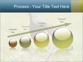 0000080400 PowerPoint Templates - Slide 87