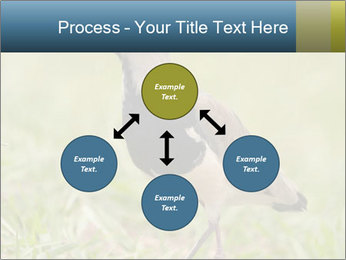 0000080400 PowerPoint Template - Slide 91