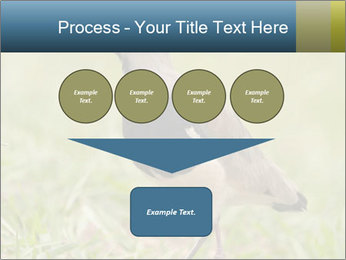 0000080400 PowerPoint Template - Slide 93