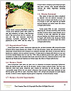 0000080405 Word Templates - Page 4