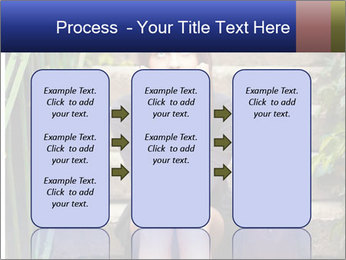 0000080414 PowerPoint Templates - Slide 86