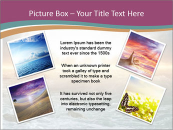 0000080424 PowerPoint Template - Slide 24