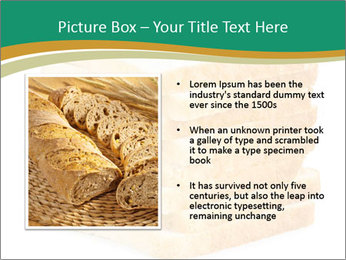 0000080425 PowerPoint Template - Slide 13