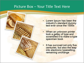 0000080425 PowerPoint Template - Slide 17