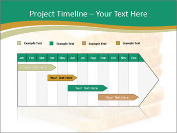 0000080425 PowerPoint Template - Slide 25