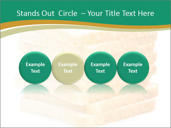 0000080425 PowerPoint Template - Slide 76