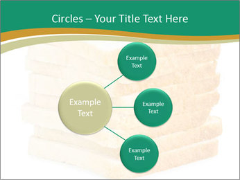 0000080425 PowerPoint Template - Slide 79