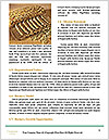0000080425 Word Templates - Page 4