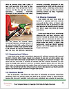 0000080426 Word Templates - Page 4