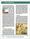 0000080428 Word Template - Page 3