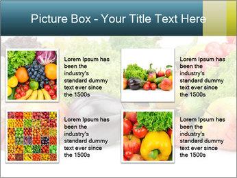 0000080430 PowerPoint Template - Slide 14