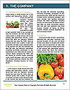 0000080430 Word Templates - Page 3