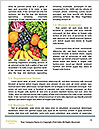 0000080430 Word Templates - Page 4