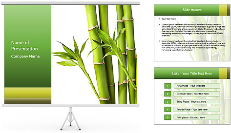 0000080432 PowerPoint Template