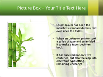 0000080432 PowerPoint Template - Slide 13