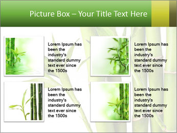 0000080432 PowerPoint Template - Slide 14