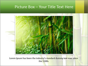 0000080432 PowerPoint Template - Slide 15