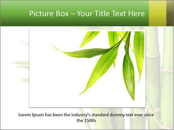 0000080432 PowerPoint Template - Slide 16