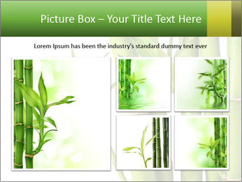 0000080432 PowerPoint Template - Slide 19