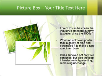 0000080432 PowerPoint Template - Slide 20