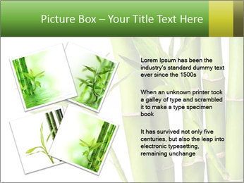 0000080432 PowerPoint Template - Slide 23