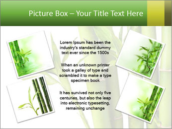 0000080432 PowerPoint Template - Slide 24