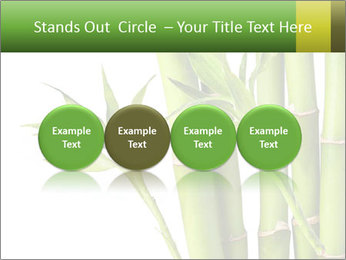 0000080432 PowerPoint Template - Slide 76