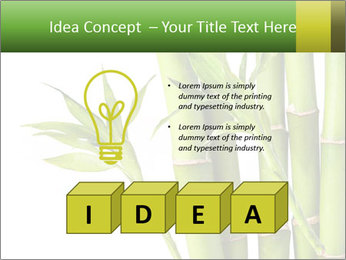 0000080432 PowerPoint Template - Slide 80