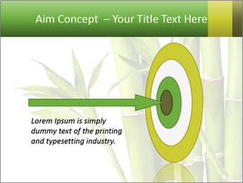 0000080432 PowerPoint Template - Slide 83