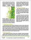 0000080432 Word Template - Page 4