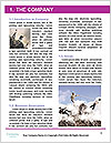 0000080436 Word Template - Page 3