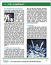 0000080438 Word Template - Page 3