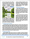 0000080441 Word Templates - Page 4