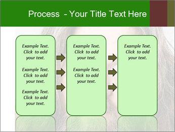 0000080447 PowerPoint Template - Slide 86